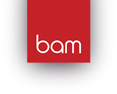 BAM Strategy – MAKE AN IMPACT | Digital Marketing Agency